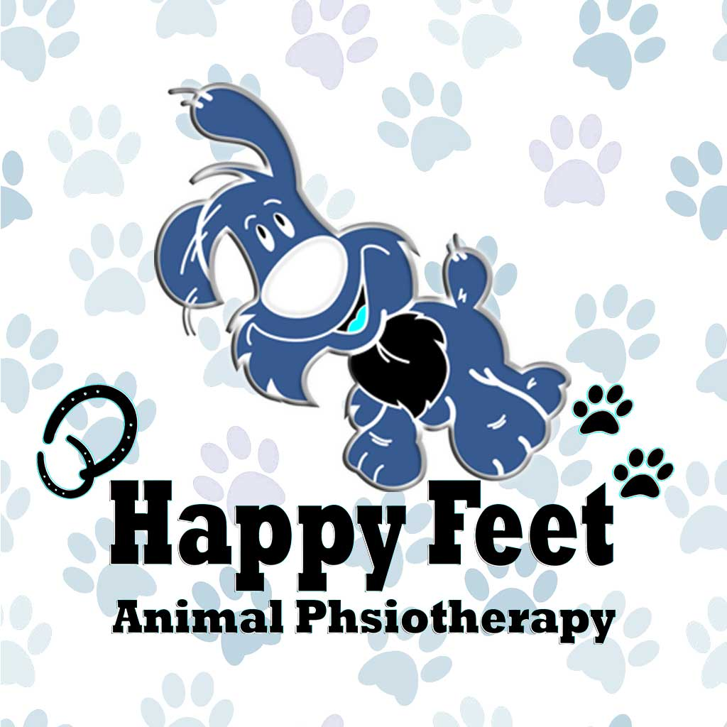 happy-feet-animal-physiotherapy