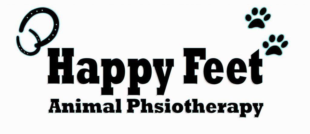 happy-feet-animal-physiotherapy-logo-by-double-xx-design